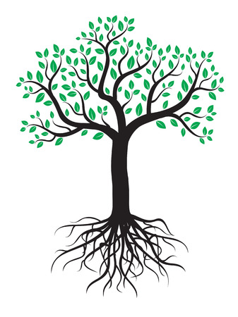 Vector tree with roots and leafs.