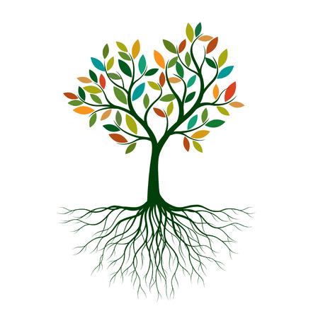 木の根っこ」の写真・イラスト素材一覧(91,825件) | ストックフォトの ...