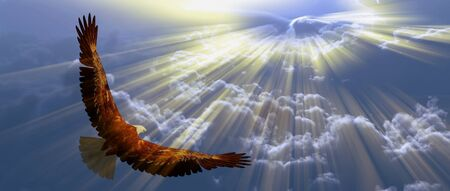 Photo for Eagle in flight above the clouds - Royalty Free Image