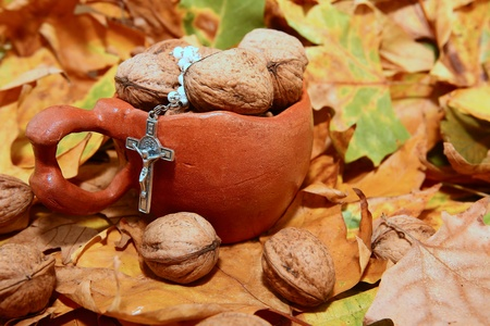 Nuts spilled from ceramic pot on background autumn leaves
