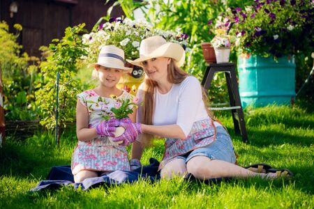 Photo for Gardening, planting - mother with daughter planting flowers into the flowerpot - Royalty Free Image