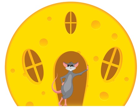Mouse is near a house made of cheese