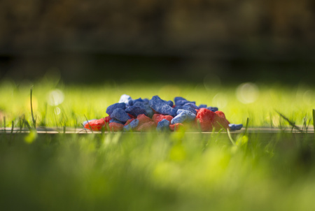small reds and blue rocks on green grass