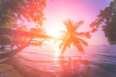 Photo pour Beautiful sunset at the beach in the tropics. Sky and ocean. Background - image libre de droit