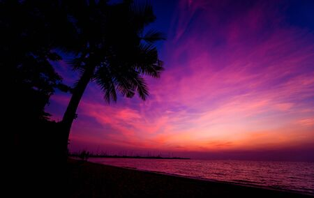 Photo for Beautiful tropical beach with palm trees. Sunrises and sunsets. Ocean. - Royalty Free Image