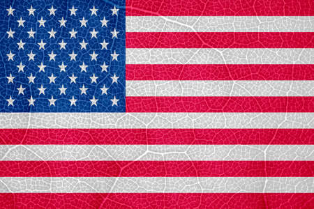 Photo pour flag of the United States of America on the structure of a tree leaf macro. High quality photo - image libre de droit