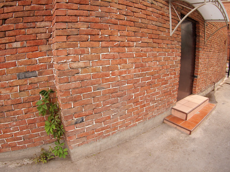 The facade of the old brick with a door and a porch and along the wall grows wild grapes, shot with a wide angle and distortion