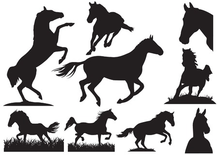Horse silhouette collection. illustration