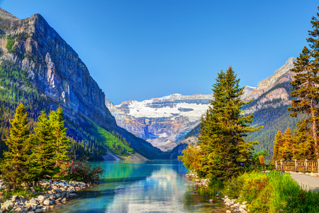Pine trees on the shore of Lake Louise in Banff National Park with its glacier-fed turquoise lakes and Mount Victoria Glacier in the background.