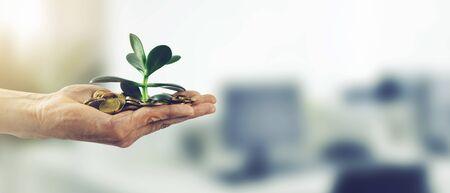 Photo pour money investment business success concept. hand with coins and plant. copy space - image libre de droit