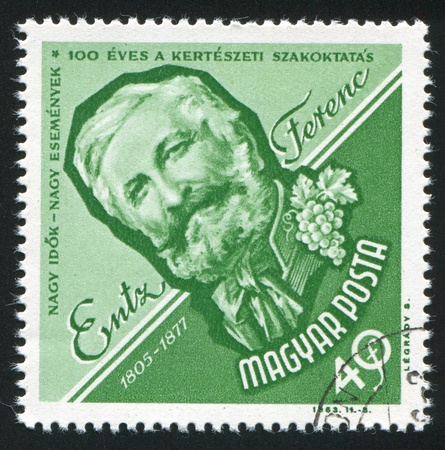 HUNGARY - CIRCA 1963: stamp printed by Hungary, shows Ferenc Entz, Horticulturist, circa 1963