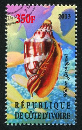 IVORY COAST - CIRCA 2013: stamp printed by Ivory Coast, shows Shell, circa 2013