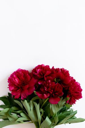 Photo for Bouquet of red peonies on a white background with copy space - Royalty Free Image