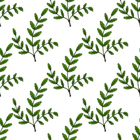 Illustration pour Boswellia in color, seamless 1 - image libre de droit