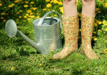 Waterpot and rubber boots on the background of green grass and dandelion
