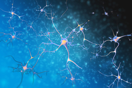 Neurons of the nervous system cells. 3d illustration