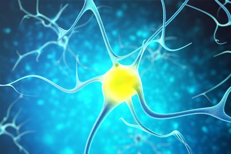Foto für Neurons in the human nervous system with the effect of depth field. 3d rendering. - Lizenzfreies Bild