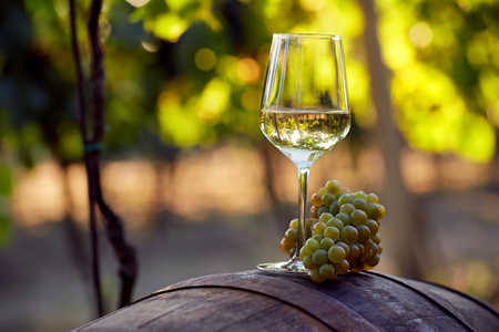 Photo pour A glass of white wine with grapes on a barrel - image libre de droit