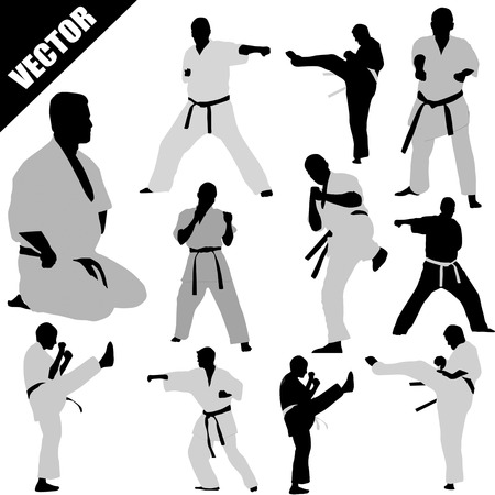 Various karate poses of fighters silhouettes on white background, vector illustration