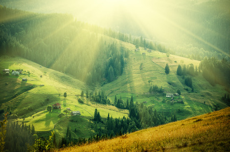 Photo pour Carpathian mountain sunny landscape - image libre de droit