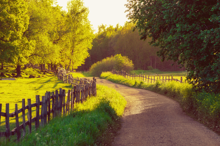 Rural Sweden summer sunny landscape with road, green trees and wooden fence. Adventure scandinavian hipster concept