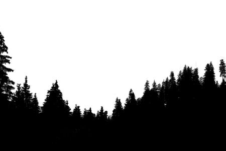 Photo pour Misty mountain landscape - image libre de droit