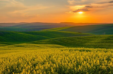 Photo pour Rural spring landscape - image libre de droit