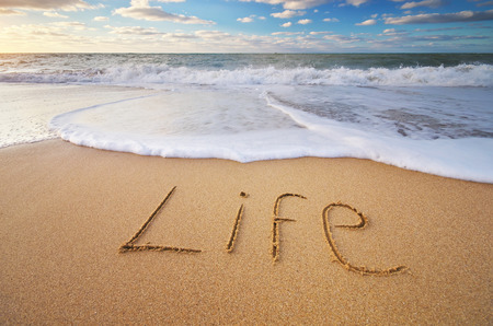Photo pour Life word on the sea sand. Conceptual nature design. - image libre de droit