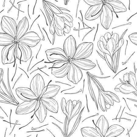 Illustration pour Vector seamless pattern with  hand drawn  saffron spice. - image libre de droit