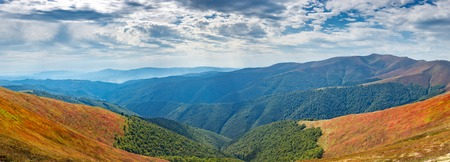The mountain range is covered in autumn with yellowed bushes of blueberries. Panorama.