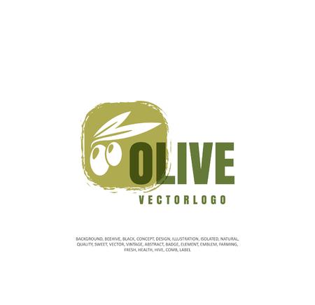 Illustration pour Olives, vegetable oil, healthy food. Vector illustration - image libre de droit