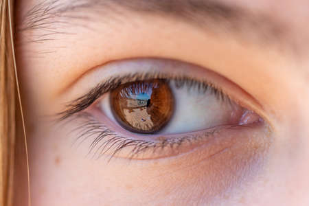 Photo pour Detail of a girl's brown eye with reflection, eyelashes, eyebrow and blonde hair. - image libre de droit