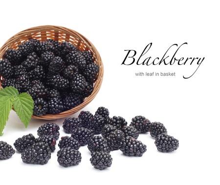 Fresh blackberry with leaf in basket