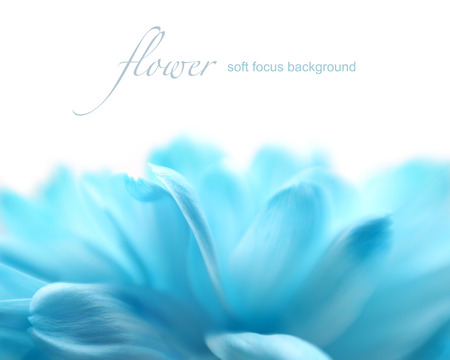 Foto de Soft focus flower background with copy space  Made with lens-baby and macro-lens  - Imagen libre de derechos