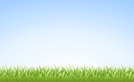 Grass on Clear Blue Morning Sky