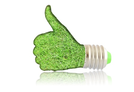 lightbulb - hand with grass. Concept - eco energy