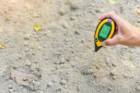 Photo for Use soil PH meter for check the PH value - Royalty Free Image