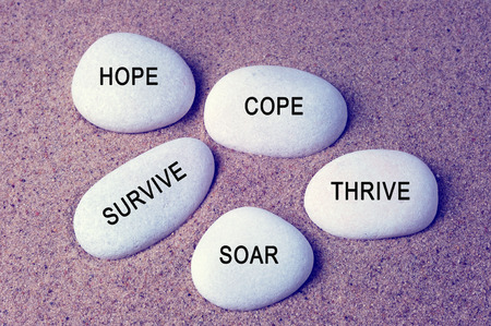 Inspirational words - hope, cope, survive, thrive and soar text on a zen stones vintage background