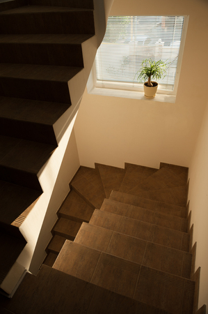 staircase in house room indoor with window and flower lit by summer warm light