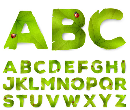 Vector alphabet letters made from green leaves, isolated on white
