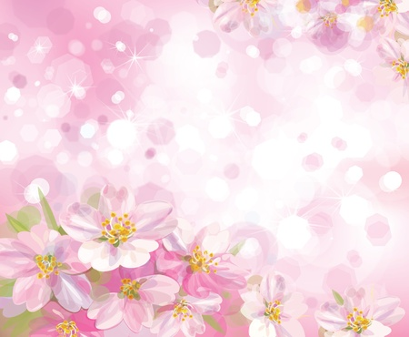 Ilustración de Vector of spring blossoming tree with pink background - Imagen libre de derechos