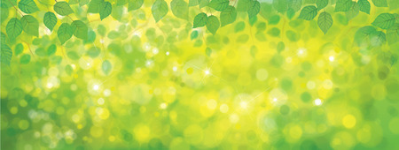 Illustration pour Vector green leaves border on sunshine background. - image libre de droit