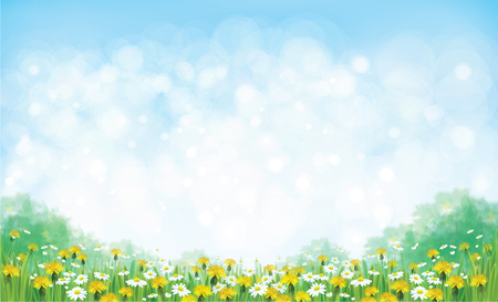 Illustration for Vector summer nature  background, chamomiles and dandelions field. - Royalty Free Image