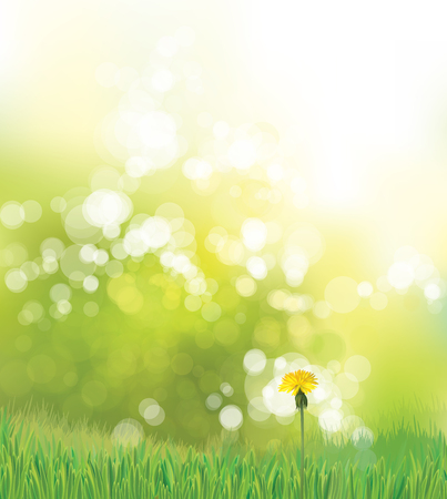 Illustration for Vector  spring background with yellow dandelion. - Royalty Free Image