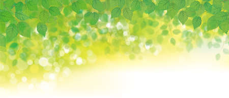 Illustration for Vector green leaves  bokeh background.  Green nature background. - Royalty Free Image