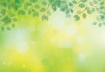 Illustration pour Vector green, bokeh, nature background. Green leaves border. Blurred effect. - image libre de droit