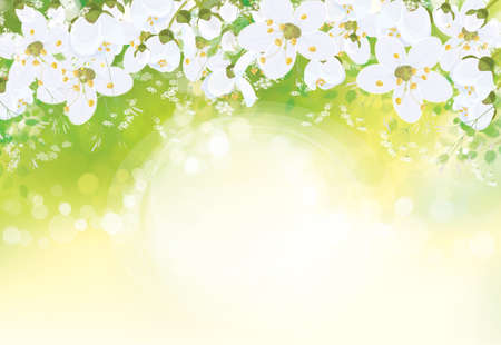 Photo pour Vector floral  background. White flowers and leaves border on green bokeh background. - image libre de droit