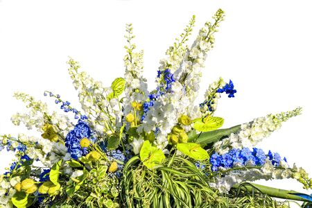 Photo pour Beautiful floral composition from white and blue flowers and variegated leaves of decorative plants. Gorgeous bouquet from different flowers and plants - stylish floral work isolated on white  - image libre de droit