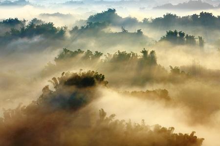 Photo pour morning sunshine with fog  - image libre de droit