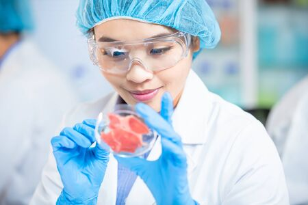 Photo pour asian science team in food laboratory with meat samples on petri dishes - image libre de droit